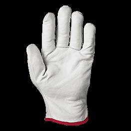 Cipro 手套